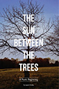 the sun between the trees book by laurie hraha