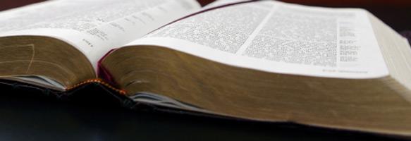 good news bible download