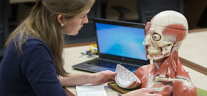 LUCOM student-doctor in library anatomical model room.