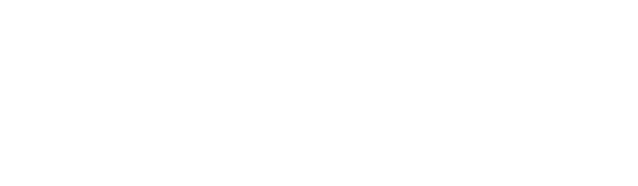 Liberty University Online Academy