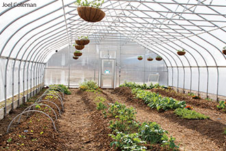 One of the high tunnels at the Liberty University Morris Campus Garden.