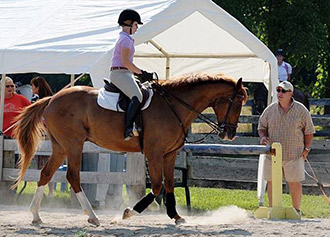 Nationally recognized coach to lead Equestrian Center ...