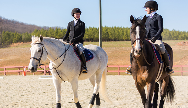 Equestrian Center upgrades open new riding opportunities ...