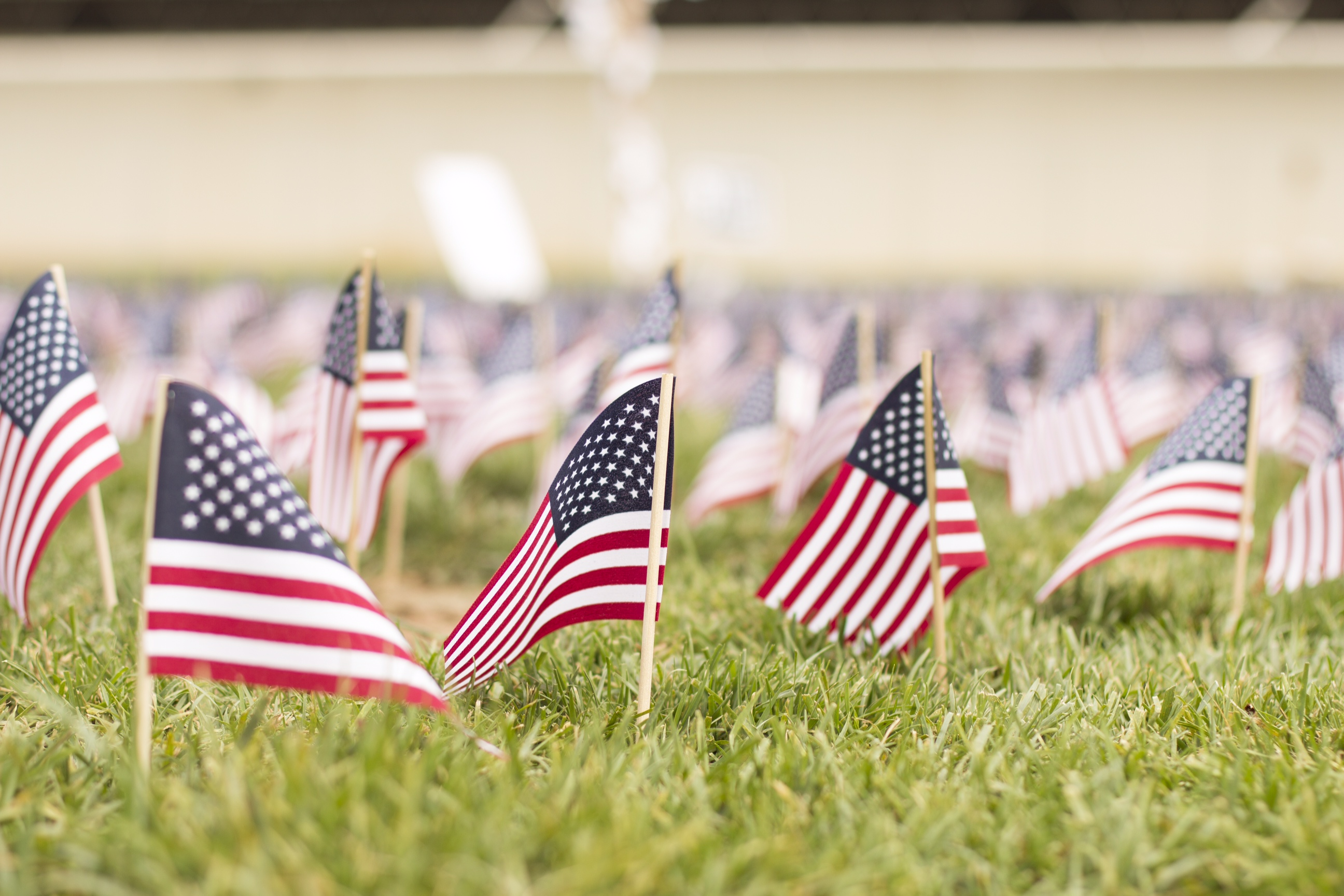 Each American flag represented one life lost in the tragedy.  Photo credit: RJ Goodwin