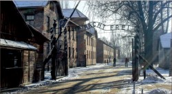 holocaust — This year marked the 70th anniversary of the liberation of Auschwitz, a camp responsible for over 1 million deaths. Photo credit: Ash Brownd