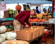 October — Fresh pumpkins were available for purchase. Photo credit: Leah Seavers