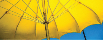 UMBRELLA — A display of yellow umbrellas will cover the lawn of the Vines Center. Photo credit: Google Images