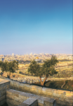 ISRAEL — The historic locations, like Jerusalem pictured above, from the Bible come to life in the Middle East.  SarahRodriguez| Liberty Champion