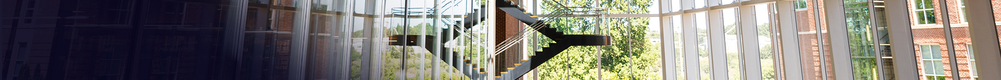 Photo of hanging stairs