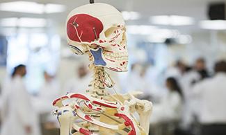 Anatomy Lab, Liberty University College of Osteopathic Medicine