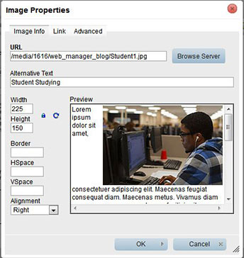 Image Properties box