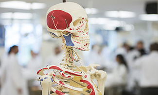 LUCOM anatomy lab and high school students | Liberty