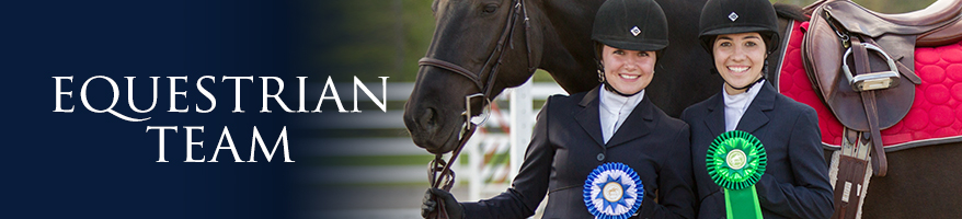 Why should the equestrian team be a sport?