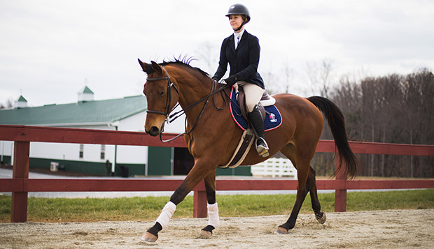 Junior Open Division rider Amber Gayheart captured three blue ribbons over the past two Sundays. (Photo by Leah Seavers) test test test test